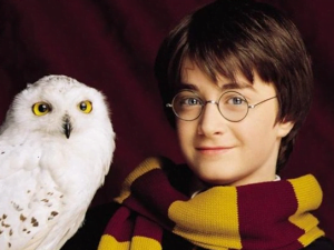 HEDVIKA Harry Potter