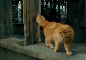 KŘIVONOŽKA Harry Potter Hermiona