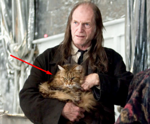 PANÍ NORRISOVÁ Harry Potter