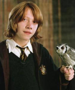 PAPUŠÍK Harry Potter
