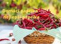 Domaci paprika nejlepsi paprika 1 1