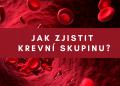 Jak zjistit krevní skupinu