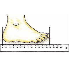 delka nohy