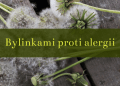 Bylinkami proti alergii 1