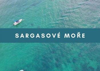 Sargasové moře