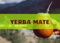 Yerba mate 1