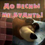 Máša a medvěd - Do jara nebudit - 2. díl